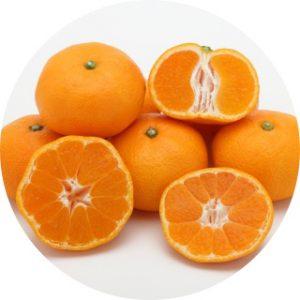 マンダリンオレンジ果皮エキス